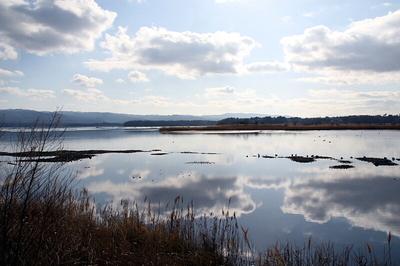 お正月の加茂湖.jpg