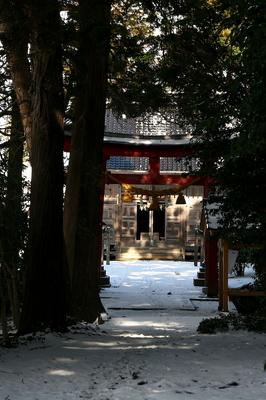 daizennjinnjya torii-1.jpg