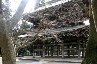 enngakuji -3.jpg