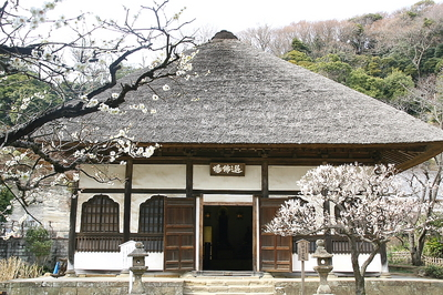 enngakuji -4.jpg