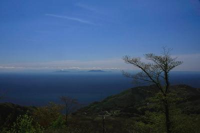 kosado-r-yoko-1.JPG
