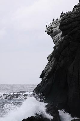 kosadonokaigan-tate-1.JPG